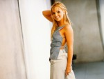 Britney Spears wallpapers (mixed quality) Fa7bde108025932