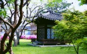 Korea - A Beautiful Country (Total 139 HQ wallpapers) Bf402c108279182