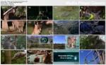Oblicza natury / Profiles of Nature (2009) PL.1080i.HDTV.x264 / Lektor PL