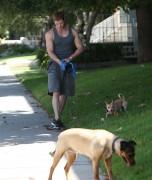 Kellan Lutz walking the dogs - July 15th, 2010 7a990f88773369