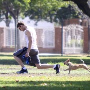 Kellan Lutz walking his dogs July 23rd 4f236c89844521