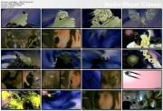IRON MAIDEN  - Flight Of Icarus (1983) - 1 music video