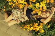 http://thumbnails29.imagebam.com/9838/0f539498374256.jpg
